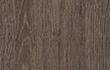 Logan Oak